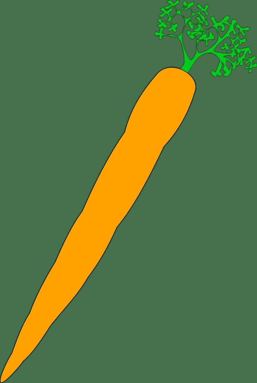 Carrot clipart transparent 10