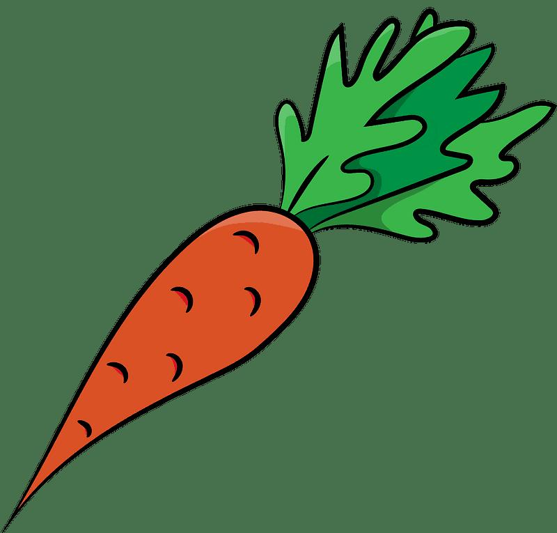 Carrot clipart transparent background