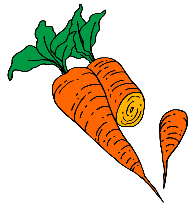 Carrots clipart image