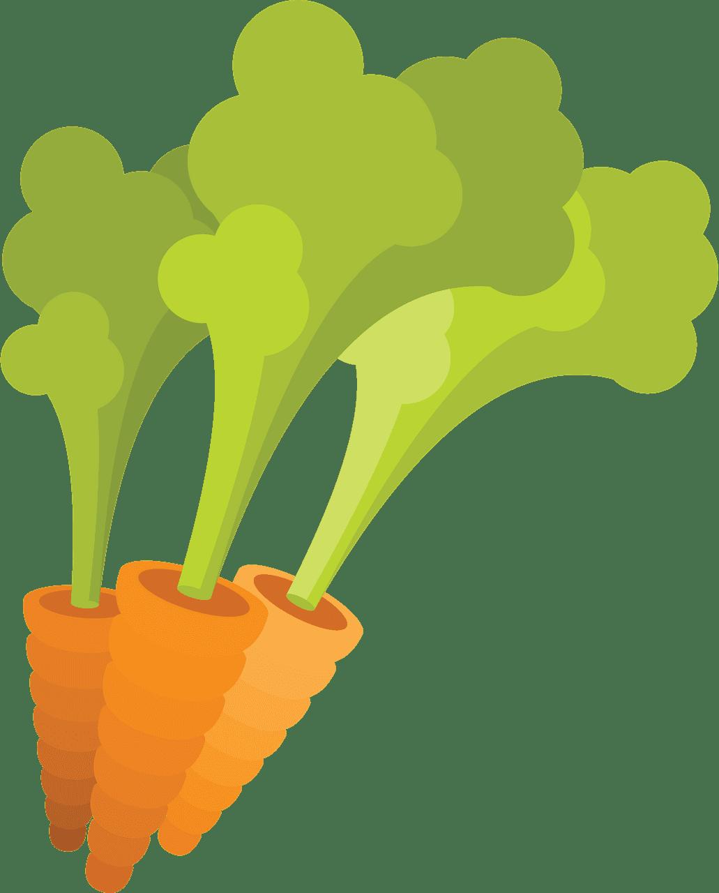 Carrots clipart transparent image